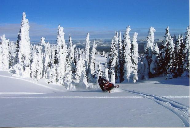 bozeman snowmobiling adventures.jpg