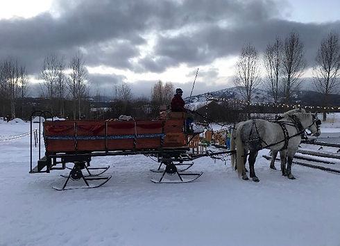 sleigh rides bodhi farms.jpg