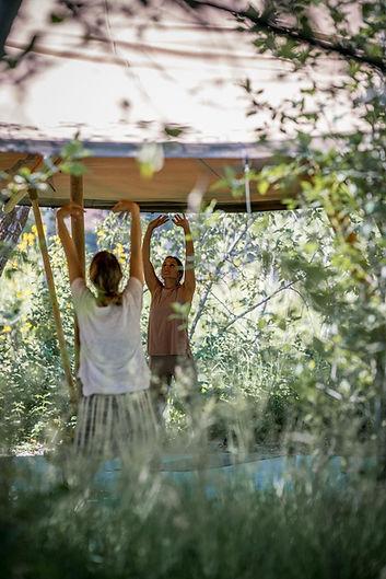 bodhi farms yoga.jpg