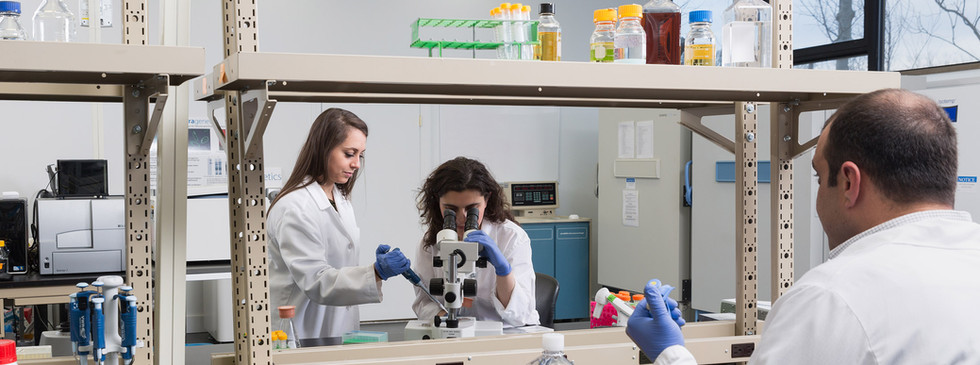 TetraGenetics - Group Microscope