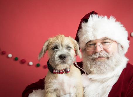 Making Spirits Bright - Community Impact This Holiday Season