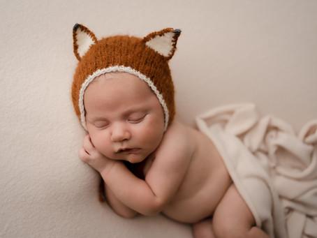 Cute Little Fox - Brevard County Newborn Photographer