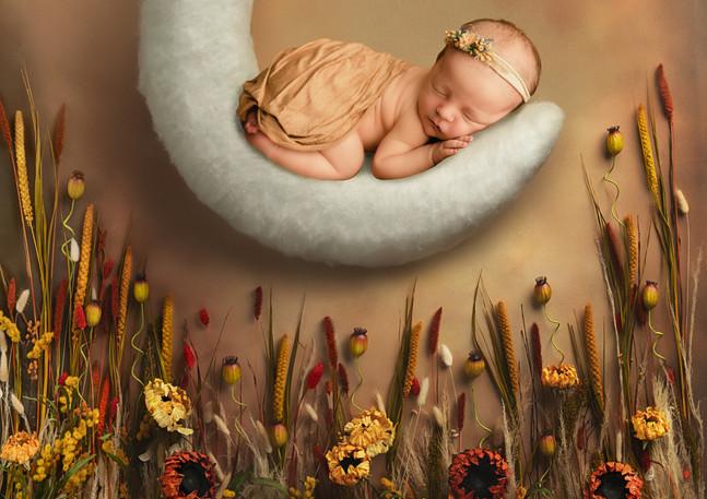 Fall Newborn Session