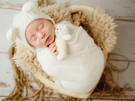 Newborn Portrait Studio in Satellite Beach, Florida