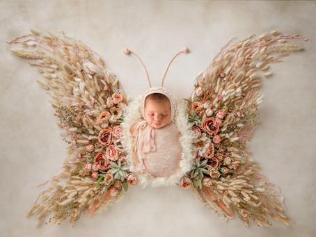 Flower Baby - Floral Newborn Photoshoot - Brevard County Newborn Photographer