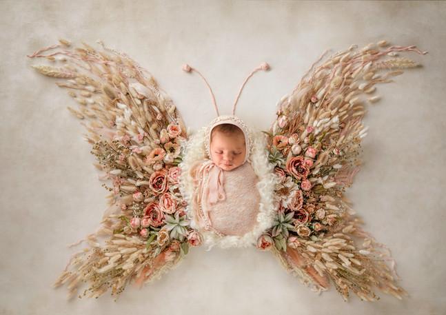 Boho Newborn Butterfly.jpg
