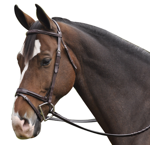 Exselle Raised Fancy Stitched Bridle