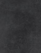 ARK BLACK.png