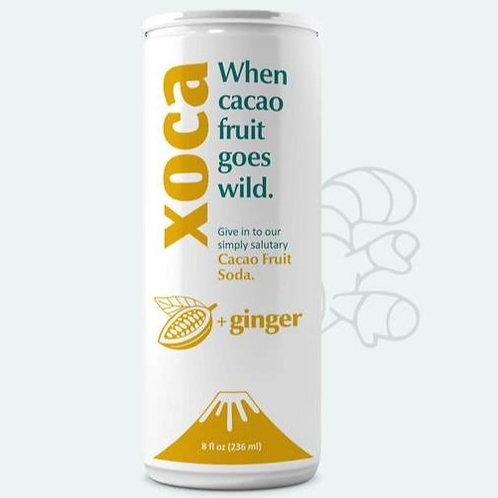 Xoca , Ginger Cacoa Fruit Soda