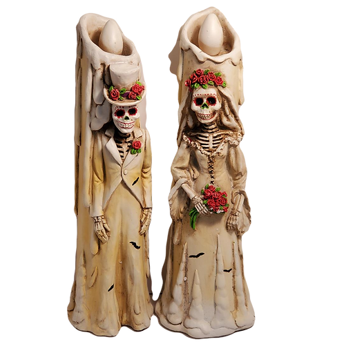 Day of the Dead/Halloween Bride and Groom