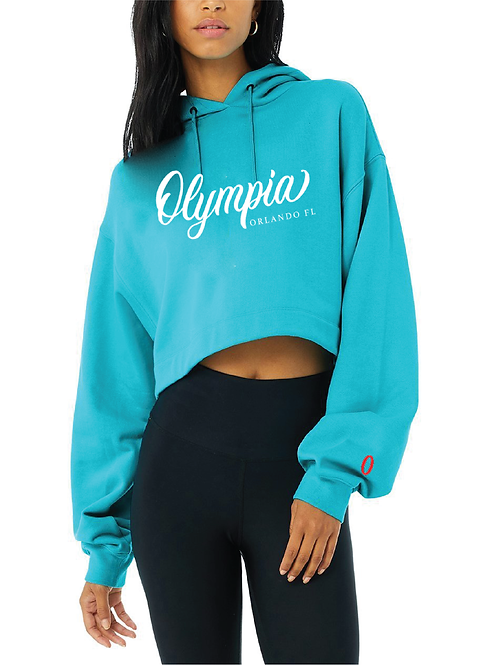 Olympia Teal Pullover with Oversized Sleeves
