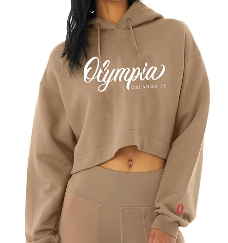 Olympia Brown Pullover with Oversized Sleeves