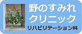 野のすみれimage.jpg