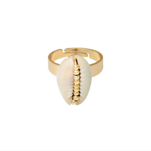 Ring Shell Obsession