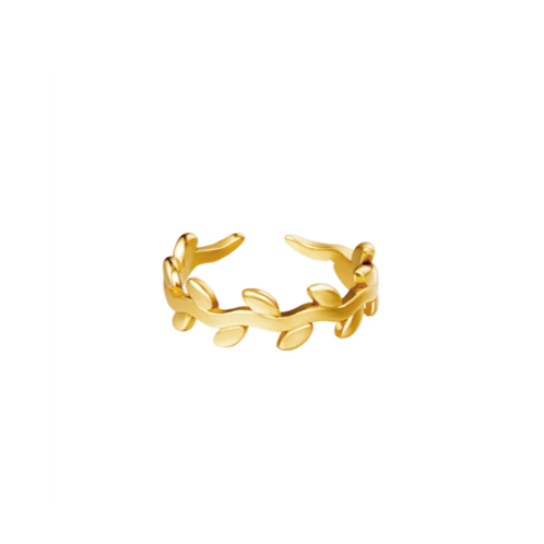 Ring lauwerkrans - goud