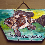 poisson _ peinture bois flotté