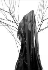 Dark root (2015)