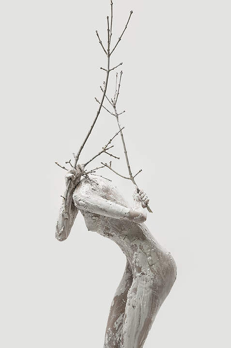Tree of Life (2015)