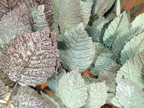 blackberry bramble leaves after the patina is applied (2012)