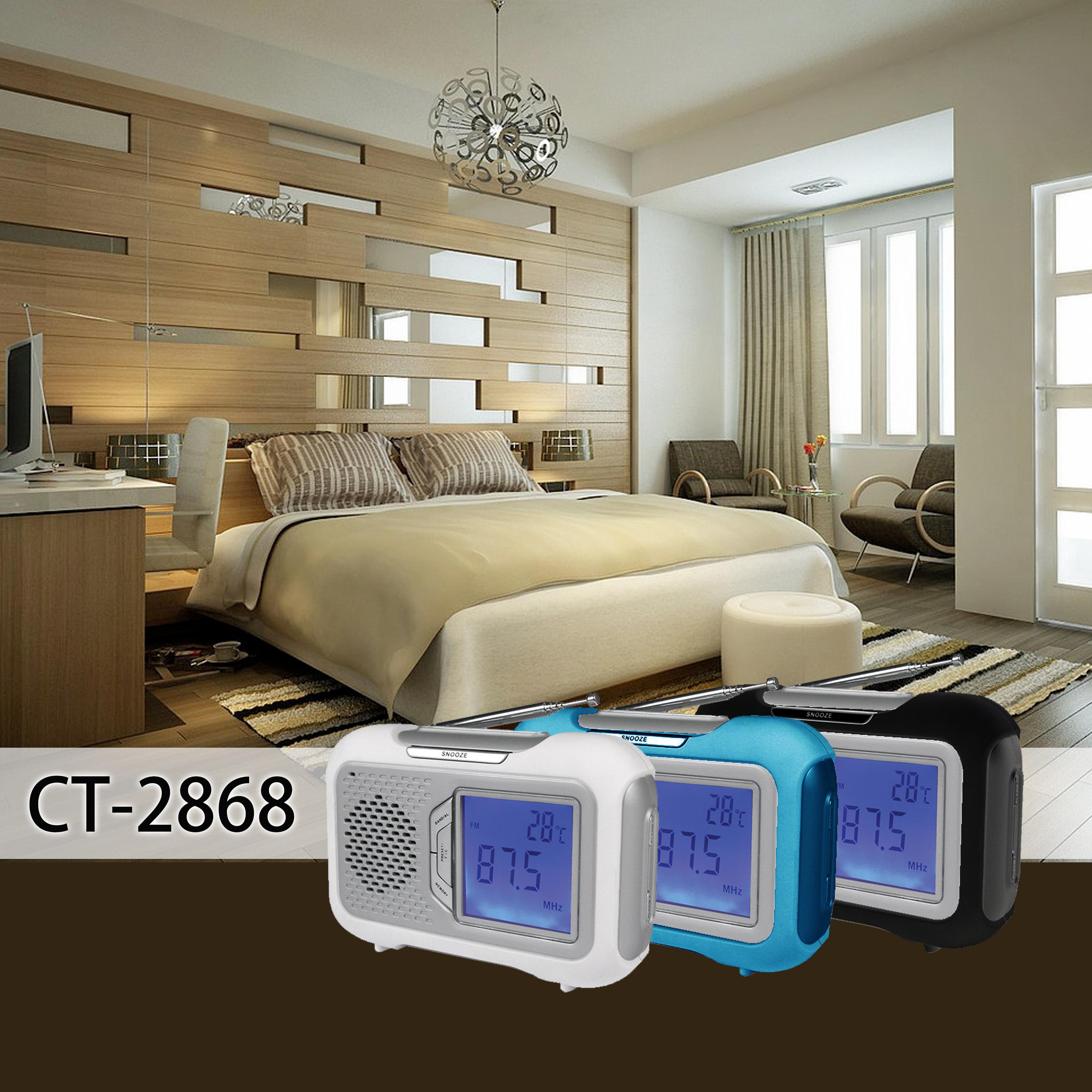CT-2868 BEDROOM.jpg