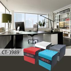 CT-3989 workingroom.jpg