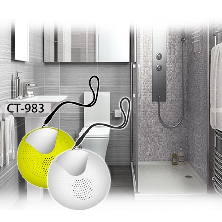 CT983 Bath radio.jpg