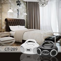 CT-289 Grand Bedroom.jpg