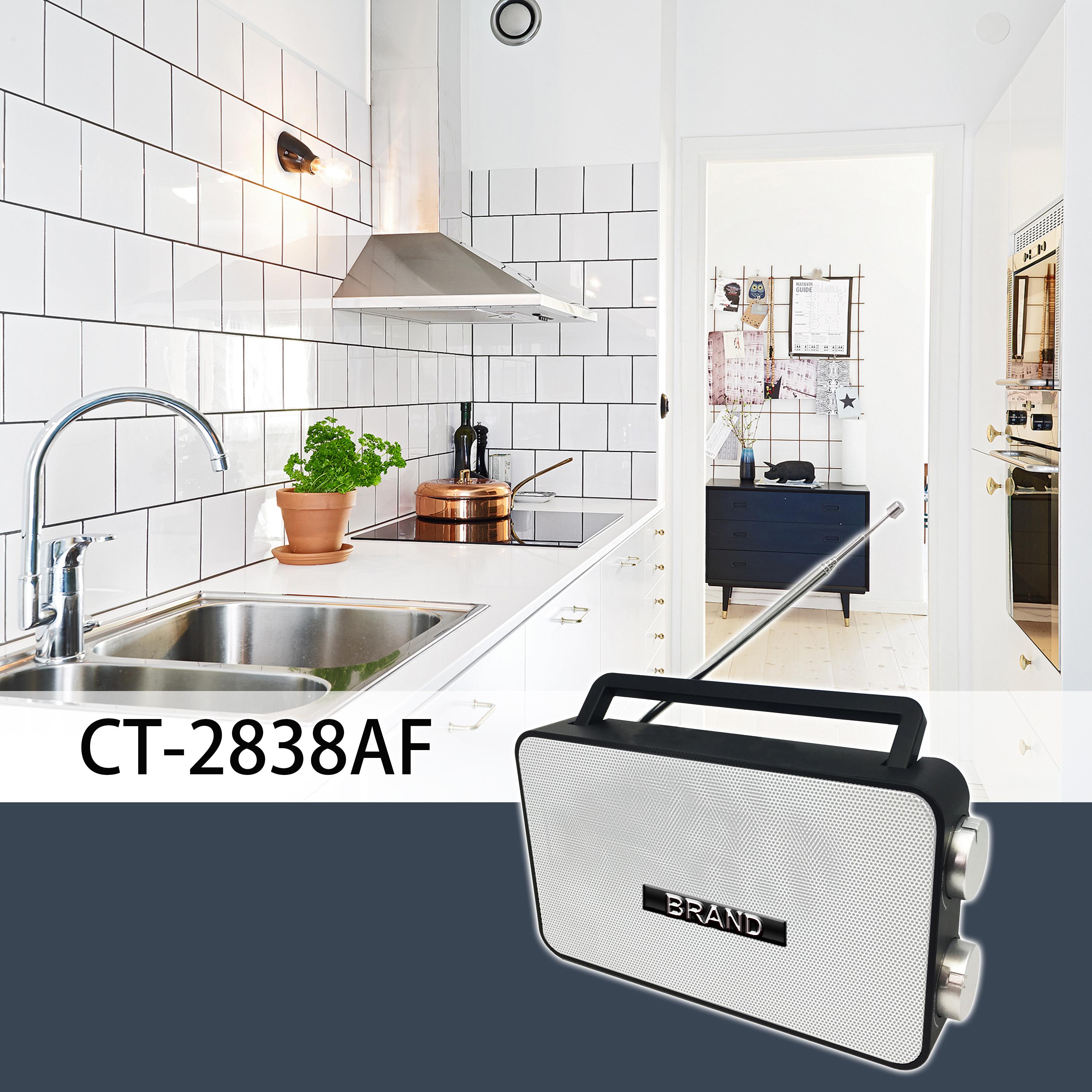CT-2838AF Kitchen.jpg