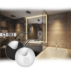 CT983 Bath radio with fog free mirror.jpg