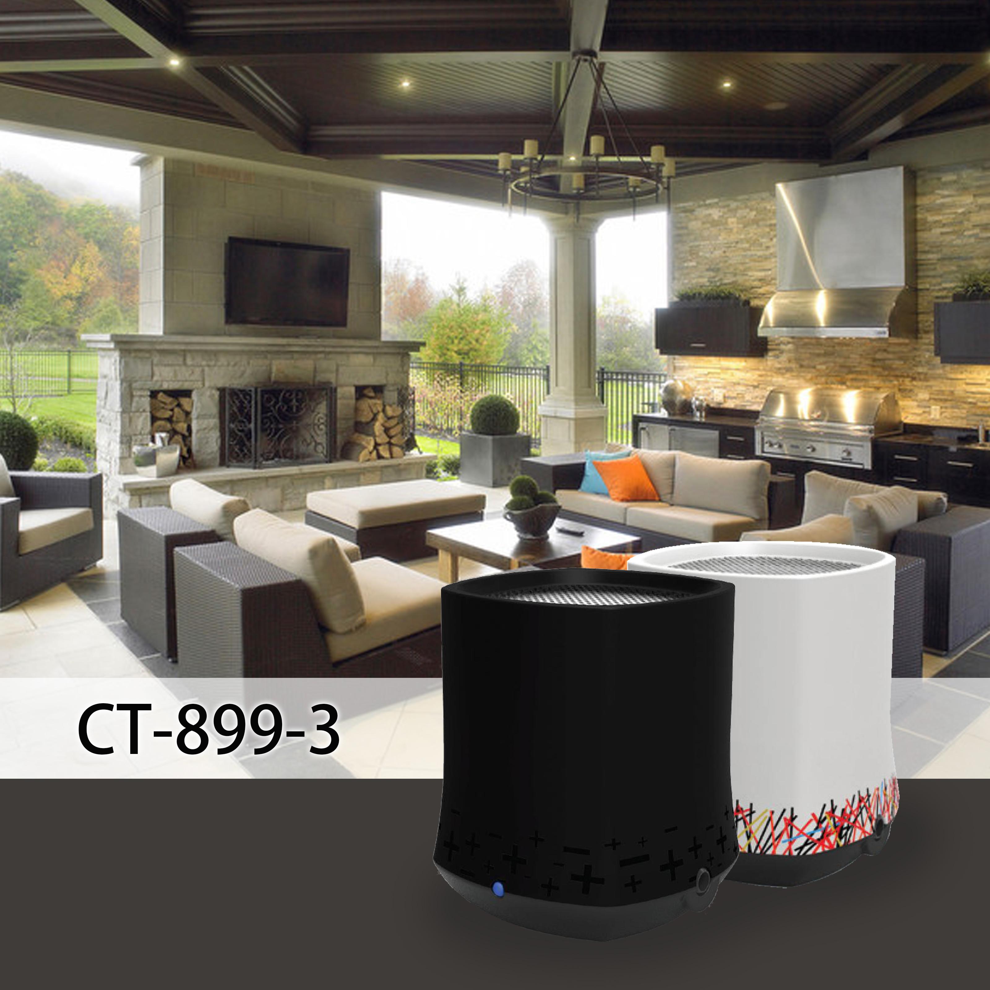 CT-899-3 open living room.jpg