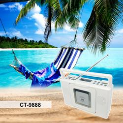 CT-9888 beach A.jpg