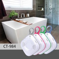 CT-984 bathroom.jpg