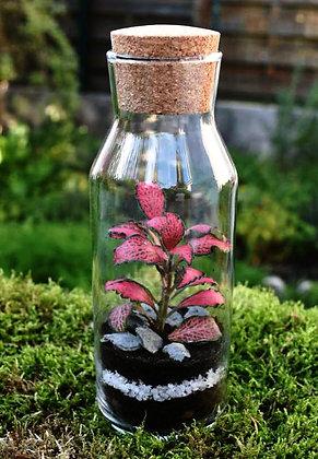 Peace plant H 21 cm