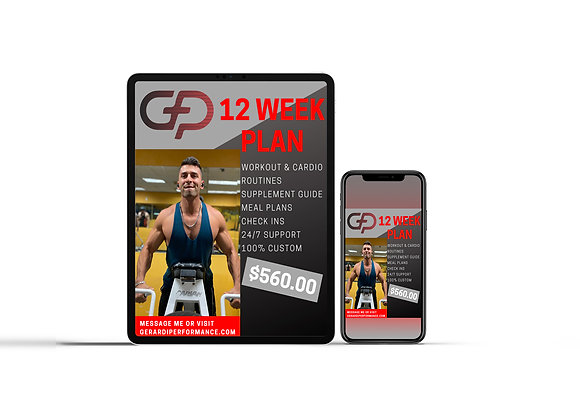 12 Week Personalized Fitness Program