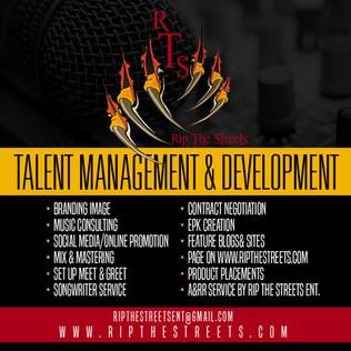 Talent Management & Development
