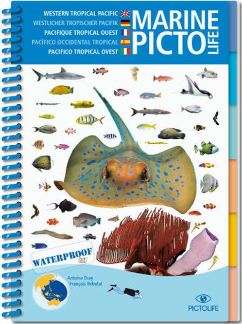 Marine Pictolife - Pacifique Asiatique