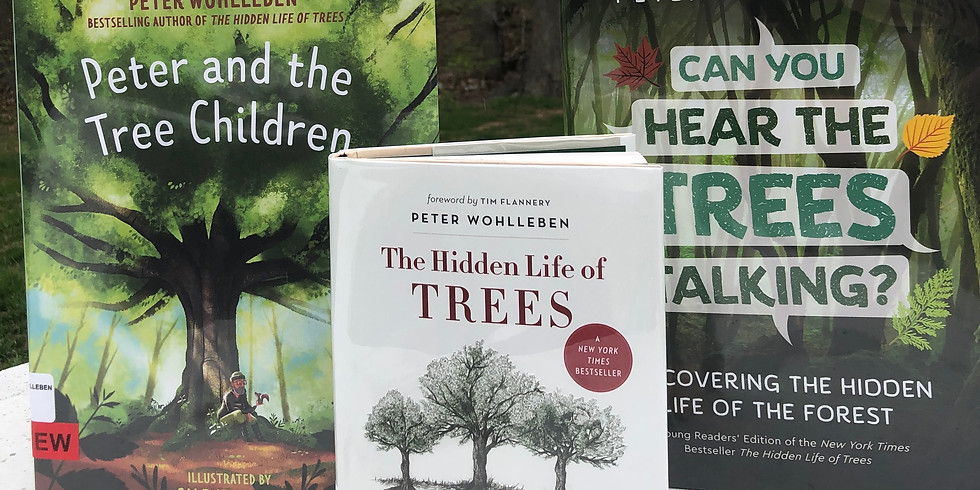 Celebrating Trees - Screen Free Saturday!