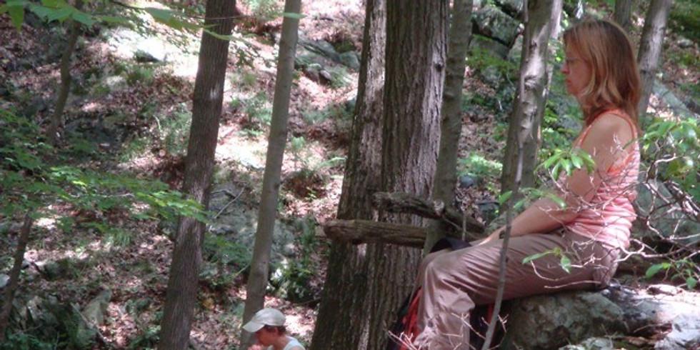 Women of the Woods - Sit Spot