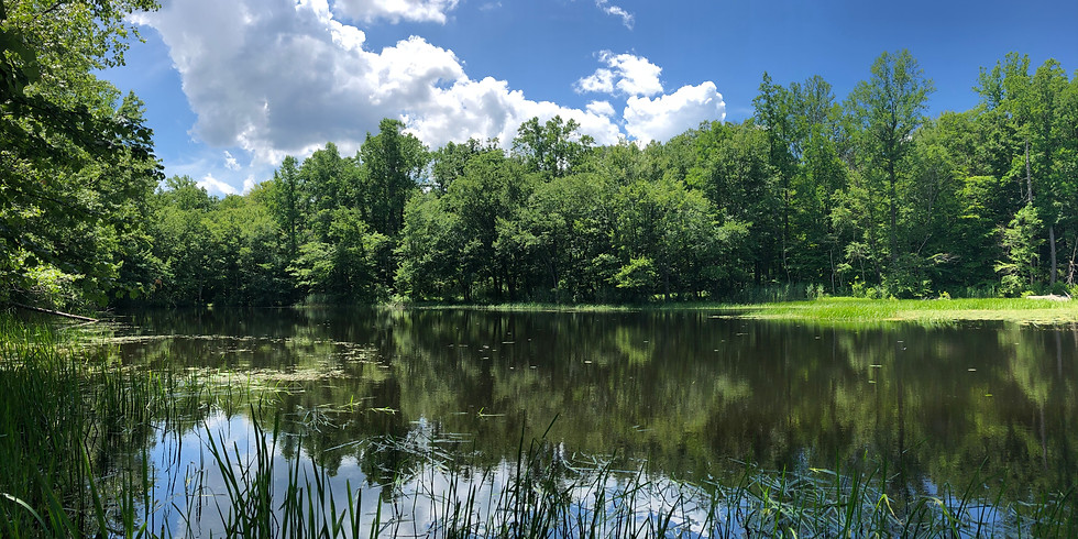 WoW Hike, Mica Ledges & Whitney Pond