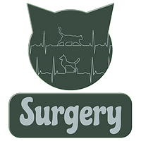 Surgery.png