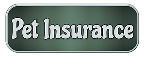 Pet Insurance.png