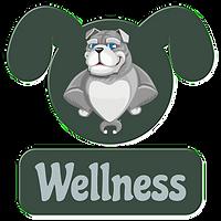 Wellness.png