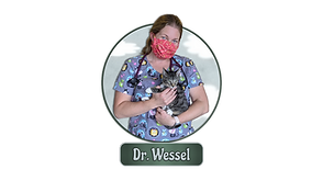 Dr. Wessel.png