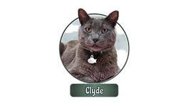 Clyde.png