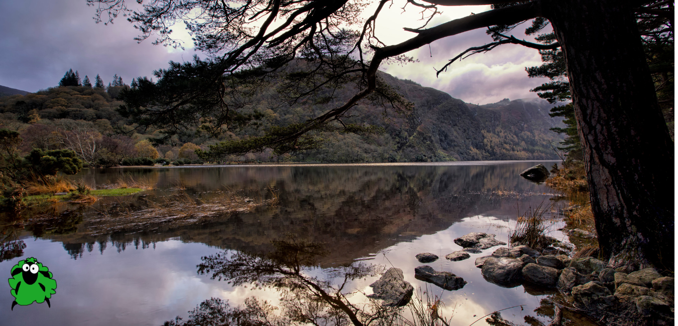 The Upper Lake, Glendalough, County Wick