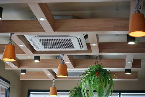 air conditioning on ceiling .jpg