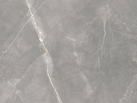 Venus grey 120x120