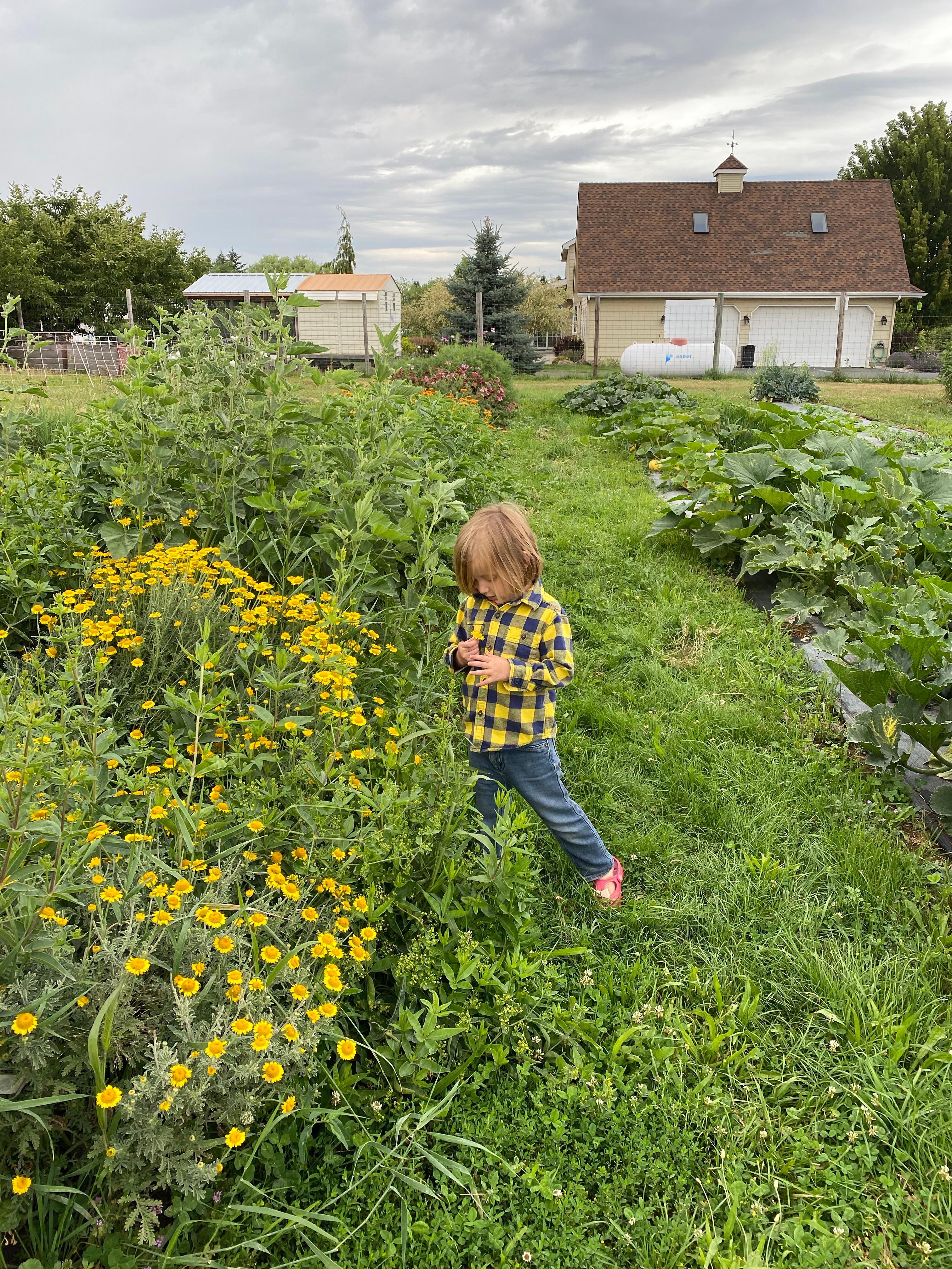 Hands-On Farm Tour
