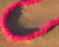 Bright Pink Necklace Pismo Beach Gifts