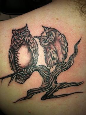 gallo_album_owl tattoo